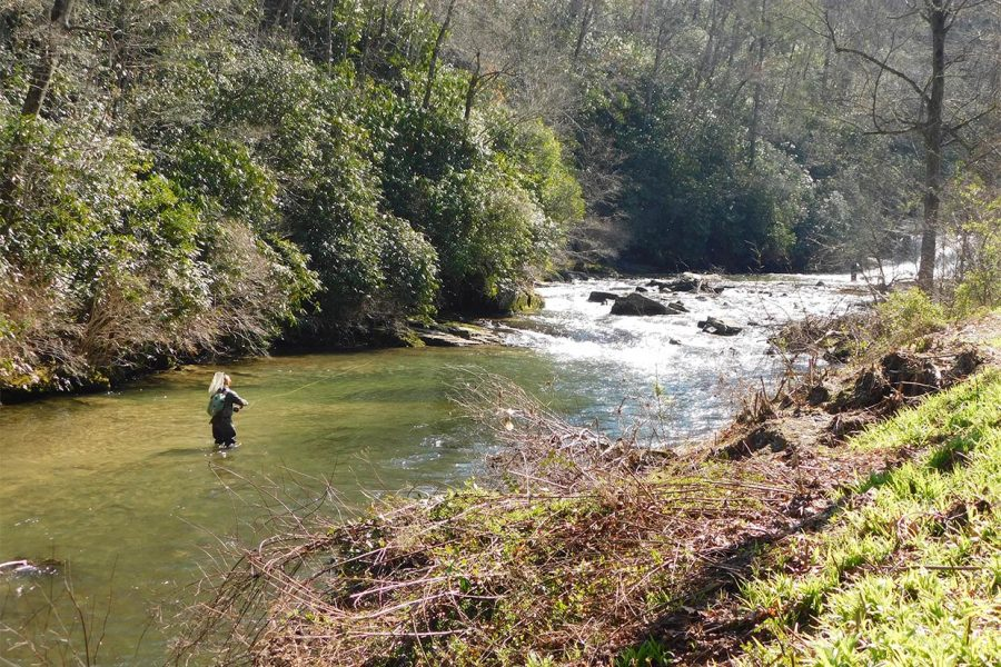 Fly Fishing in North Carolina: All You Need to Know