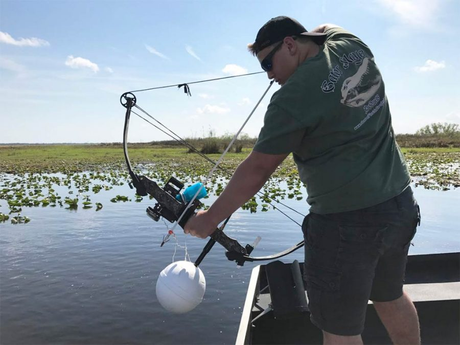 Florida Bowfishing: Everything You Need to Know
